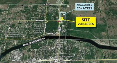 Commercial Lots & Land For Sale: N State Rd 29