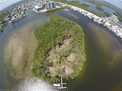 Fort Myers Residential Lots & Land For Sale: Island
