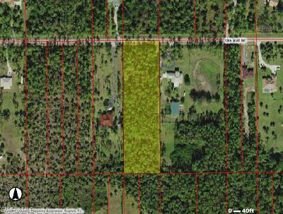 Naples Residential Lots & Land For Sale: 4240 12th Ave SE