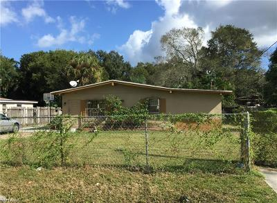 Fort Myers Single Family Home For Sale: 813 Van Buren St