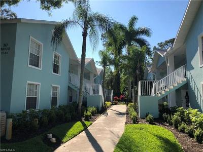 Bonita Springs Condo/Townhouse For Sale: 28250 Pine Haven Way #80