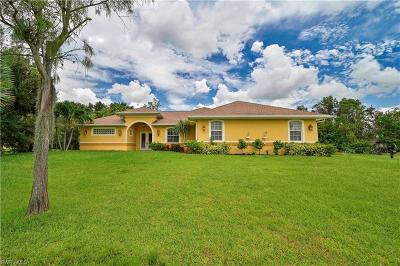 Fort Myers Single Family Home For Sale: 10690 Fountain Ave