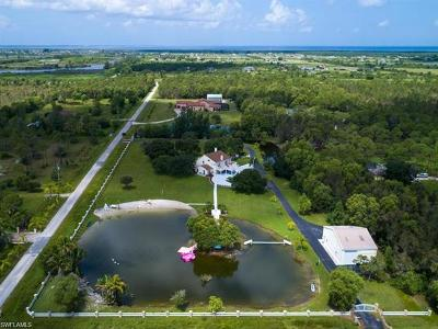 Cape Coral Single Family Home For Sale: 16710 Sanctuary Estates Dr