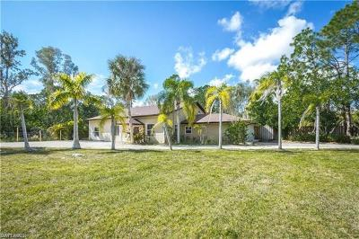 Fort Myers Single Family Home For Sale: 13860 Sophomore Ln