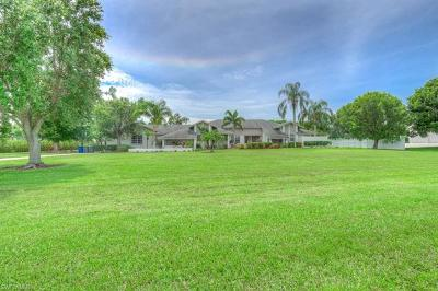Fort Myers Single Family Home For Sale: 9025 Ligon Court