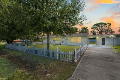 North Fort Myers Single Family Home For Sale: 1162 Travis Avenue