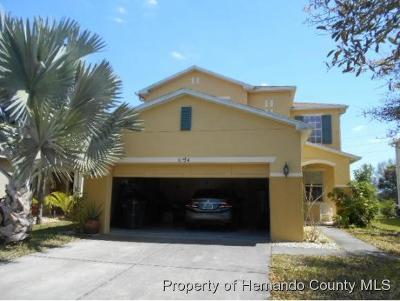 Wesley Chapel Single Family Home Active - Under Contract