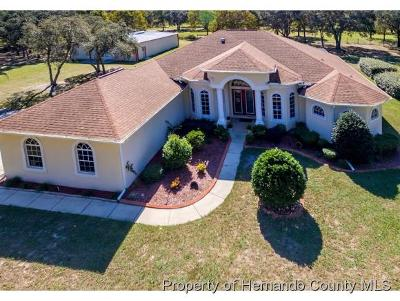 Spring Hill Single Family Home For Sale: 9464 Orchard Way
