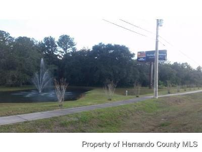 Woodland Waters Phase 1, Woodland Waters Phase 2, Woodland Waters Phase 4, Woodland Waters Phase 5 Commercial Lots & Land For Sale: Us 19 W Us Highway 19