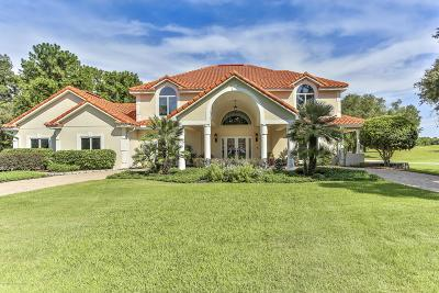 Luxury Homes For Sale In Spring Hill Fl