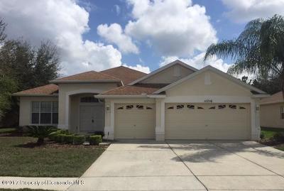 Wellington At Seven Hills Homes Spring Hill Florida