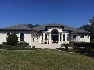 Spring Hill Single Family Home For Sale: 9363 Brady Street