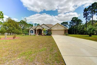 Spring Hill Single Family Home For Sale: 2070 Maximilian Avenue