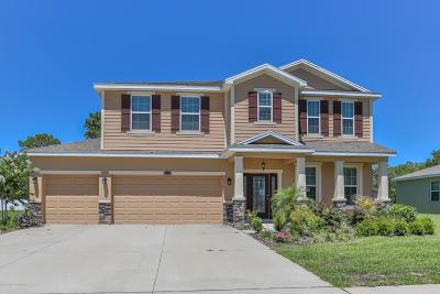 Spring Hill Single Family Home For Sale: 13207 Weatherstone