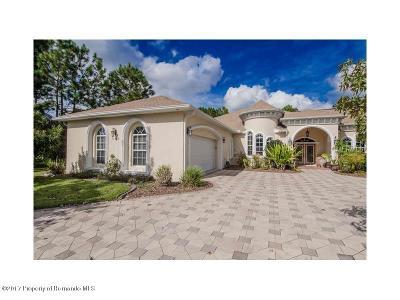 Spring Hill Single Family Home For Sale: 11377 Newington Avenue