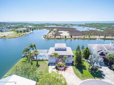 Hernando Beach Single Family Home For Sale: 3479 Crape Myrtle Drive