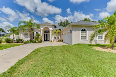 Spring Hill Single Family Home For Sale: 13445 Twinberry Drive
