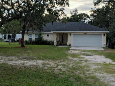 Hudson Single Family Home For Sale: 17507 Meridian Boulevard