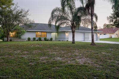 Weeki Wachee Single Family Home For Sale: 7378 Jomel