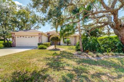 Spring Hill Single Family Home For Sale: 10414 Palmgren