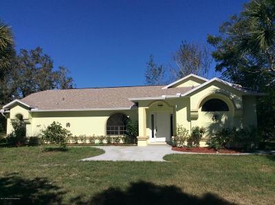 Spring Hill Single Family Home For Sale: 17206 Monteverde Drive
