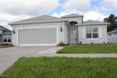 Hudson Single Family Home For Sale: 14503 Strathglass Drive