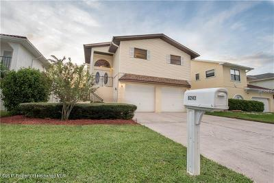 New Port Richey Single Family Home For Sale: 6241 Bayside
