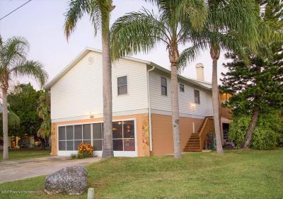 Hernando Beach Single Family Home For Sale: 3338 Fernleaf Drive