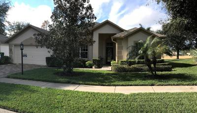 Hudson Single Family Home For Sale: 18819 Grand Club Drive