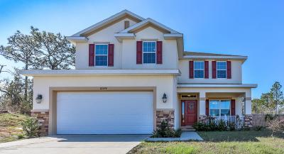 Spring Hill Single Family Home For Sale: 12494 Centennial