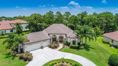 Brooksville Single Family Home For Sale: 5386 Firethorn Point