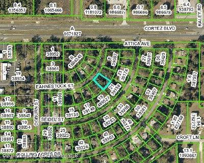 Residential Lots & Land For Sale: Eahnestock Street