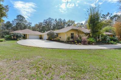 Hernando Single Family Home For Sale: 136 E Pilar Street
