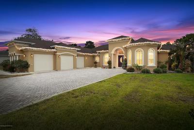 Weeki Wachee Single Family Home For Sale: 10264 Ridge Top Loop