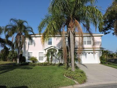 Hernando Beach Single Family Home For Sale: 3417 Fernleaf Drive