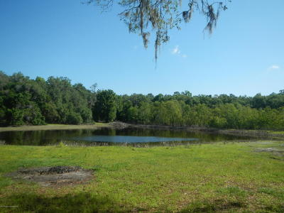 Brooksville Single Family Home For Sale: 22475 Mondon Hill Road
