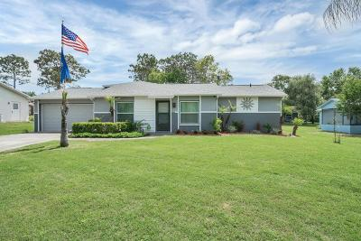 Spring Hill Single Family Home For Sale: 12128 Shafton Road