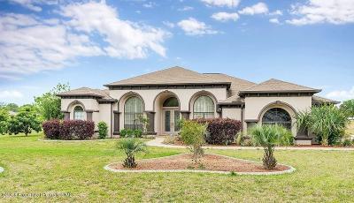 Hernando Single Family Home For Sale: 712 E Boston Street