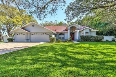 Hudson Single Family Home For Sale: 14025 Warm Springs
