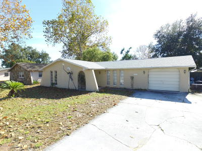 Port Richey Single Family Home For Sale: 6954 Fireside Drive