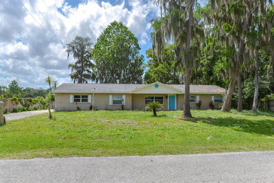 Lutz Single Family Home For Sale: 17208 Orangewood Drive