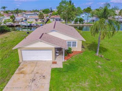 Hudson Single Family Home For Sale: 13821 Judy Avenue