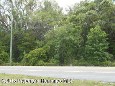 Spring Hill(Pasco) Residential Lots & Land For Sale: Us-41