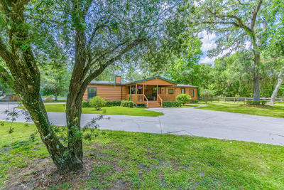 Dade City Single Family Home For Sale: 17554 Palomino Lake Drive