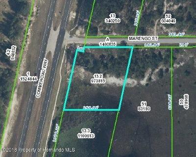 Residential Lots & Land For Sale: Marengo Street