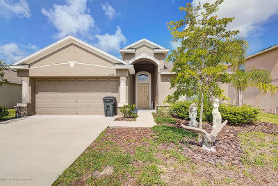 Hudson Single Family Home For Sale: 18353 Briar Oaks Drive