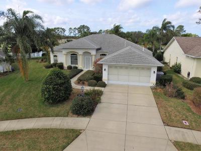 Hudson Single Family Home For Sale: 11124 Windrush Circle