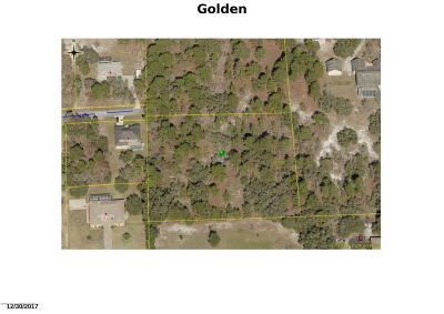 Residential Lots & Land For Sale: Golden