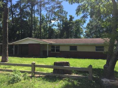 Hernando County Single Family Home For Sale: 1536 Sabra Drive