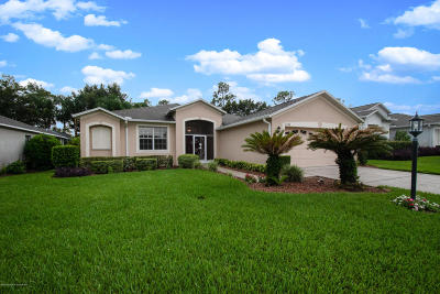 Hudson Single Family Home For Sale: 11738 Wayside Willow Court